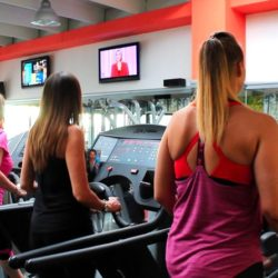 La Sala Cardio del centro wellness Fit For Life di Conegliano (TV)